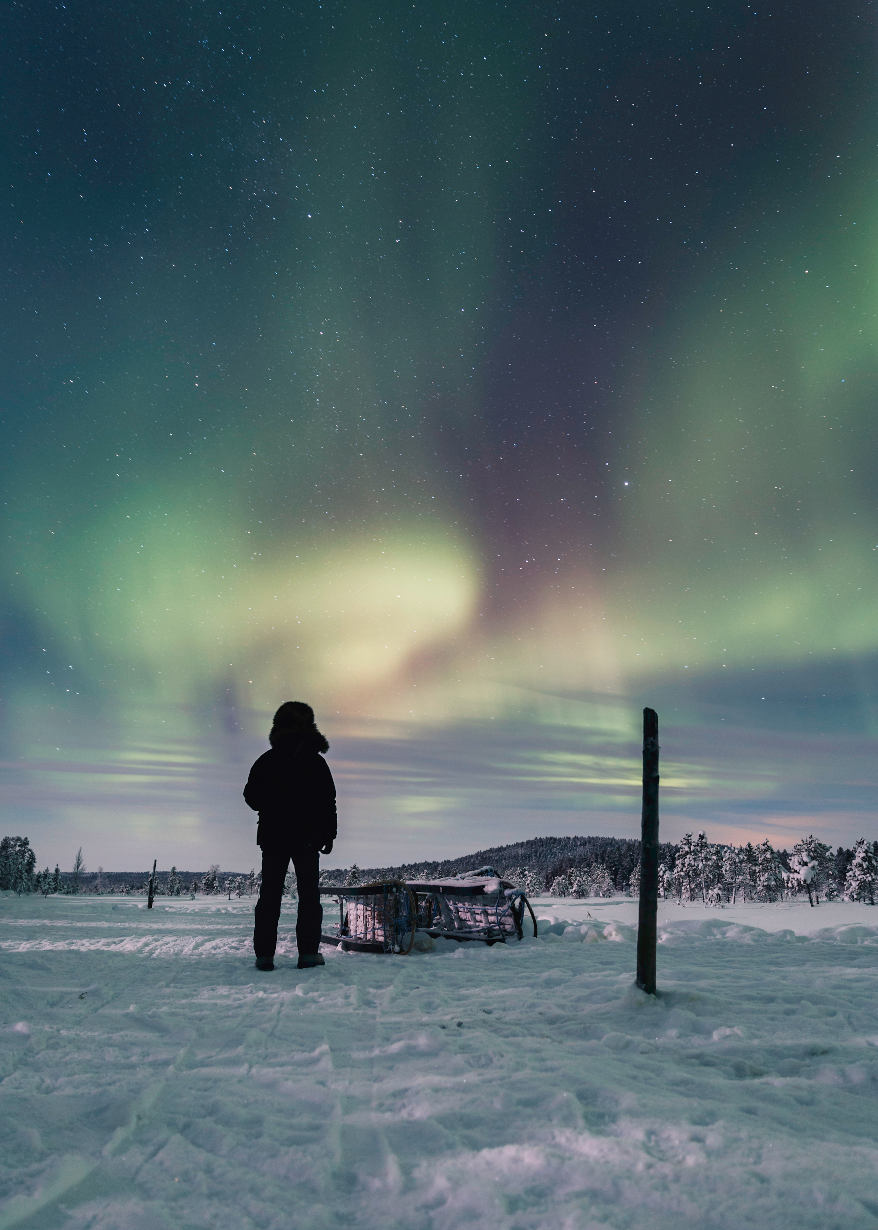 Arctic Cold Squarespace-32.jpg