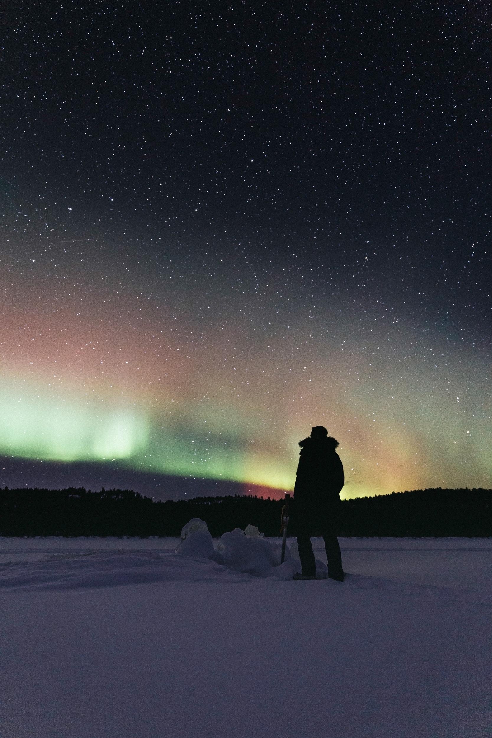 Arctic Cold Squarespace-71.jpg