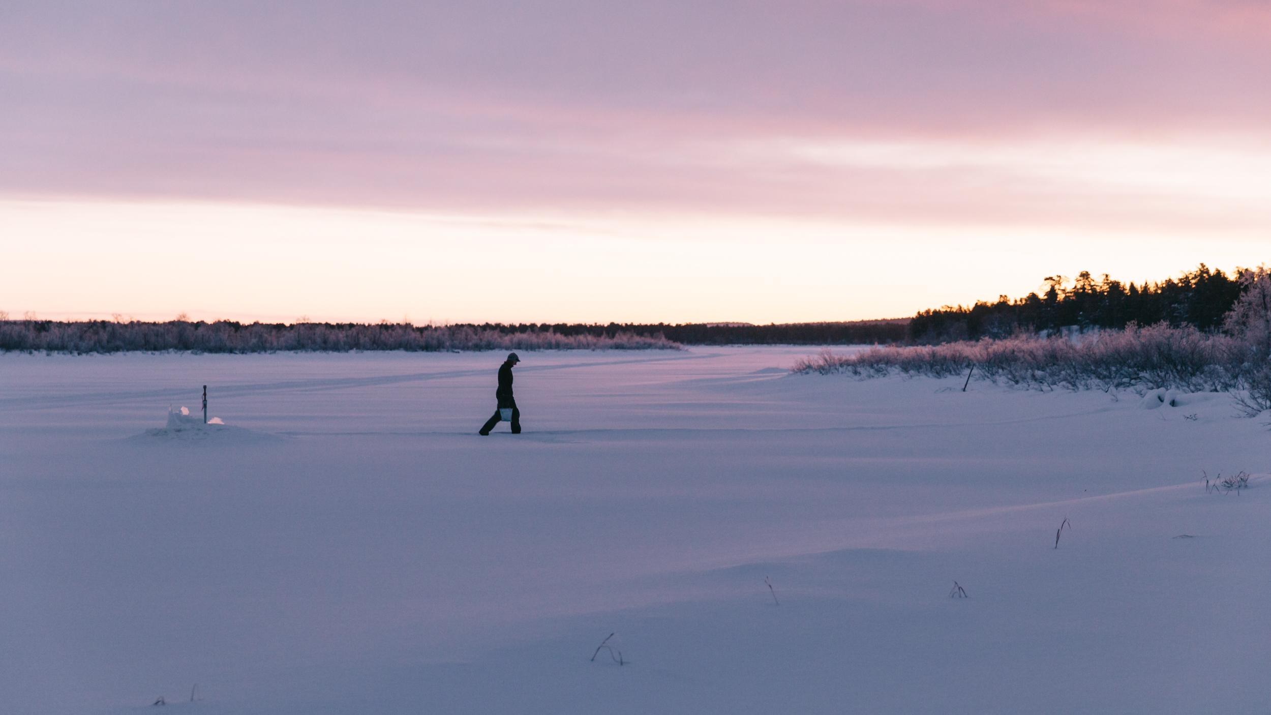 Arctic Cold Squarespace-1.jpg