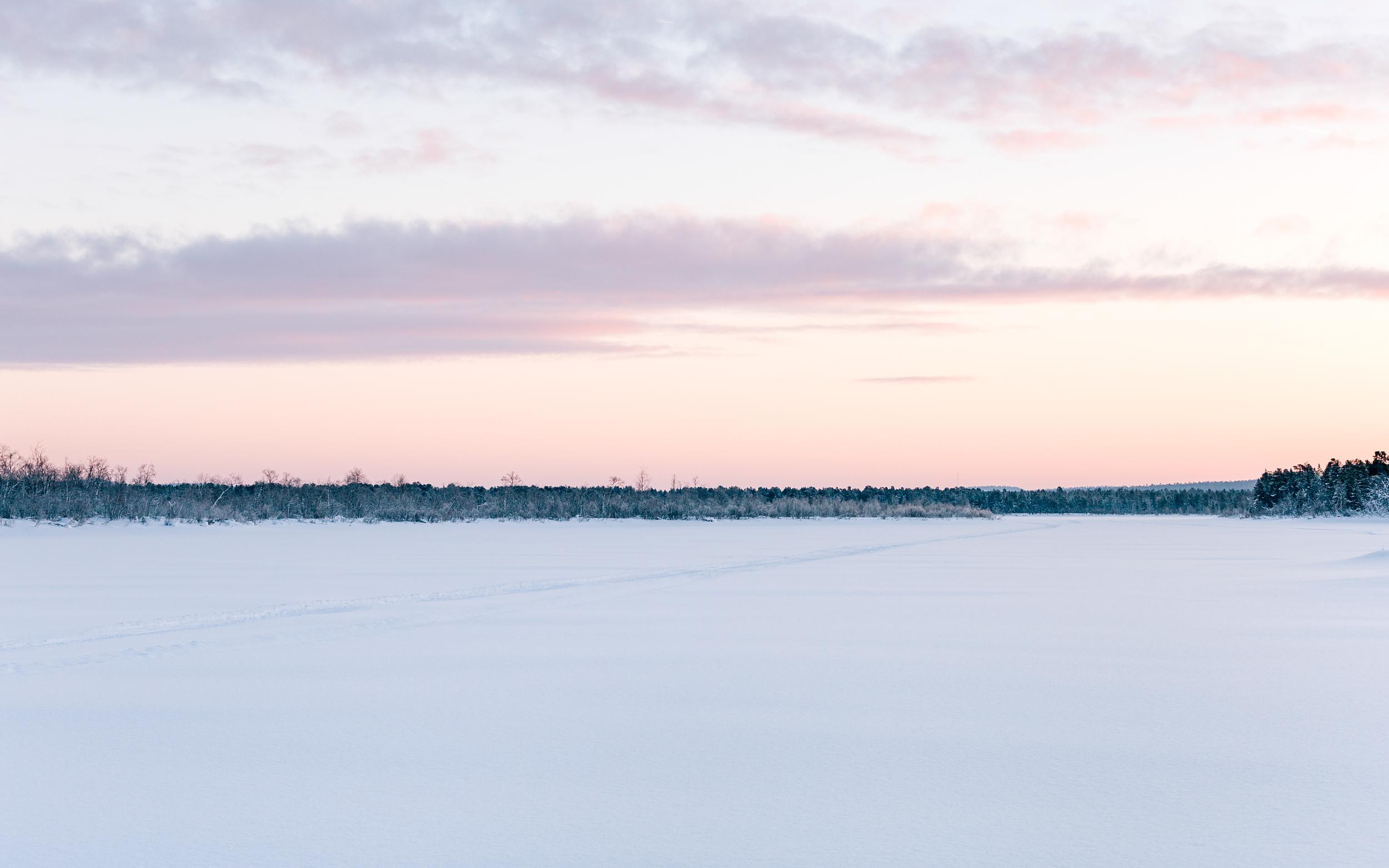 Arctic Cold Squarespace-64.jpg