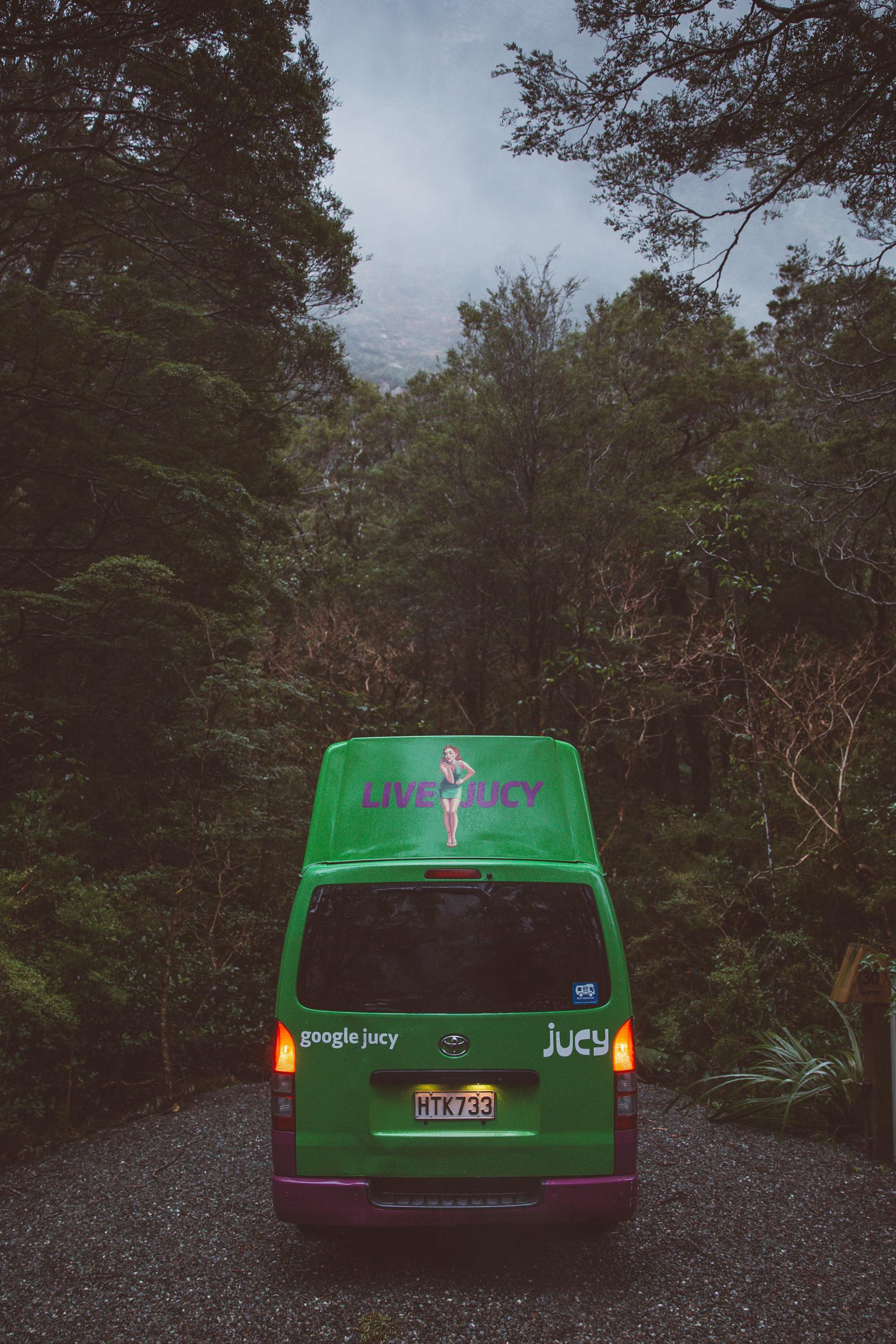 NZ_43.jpg