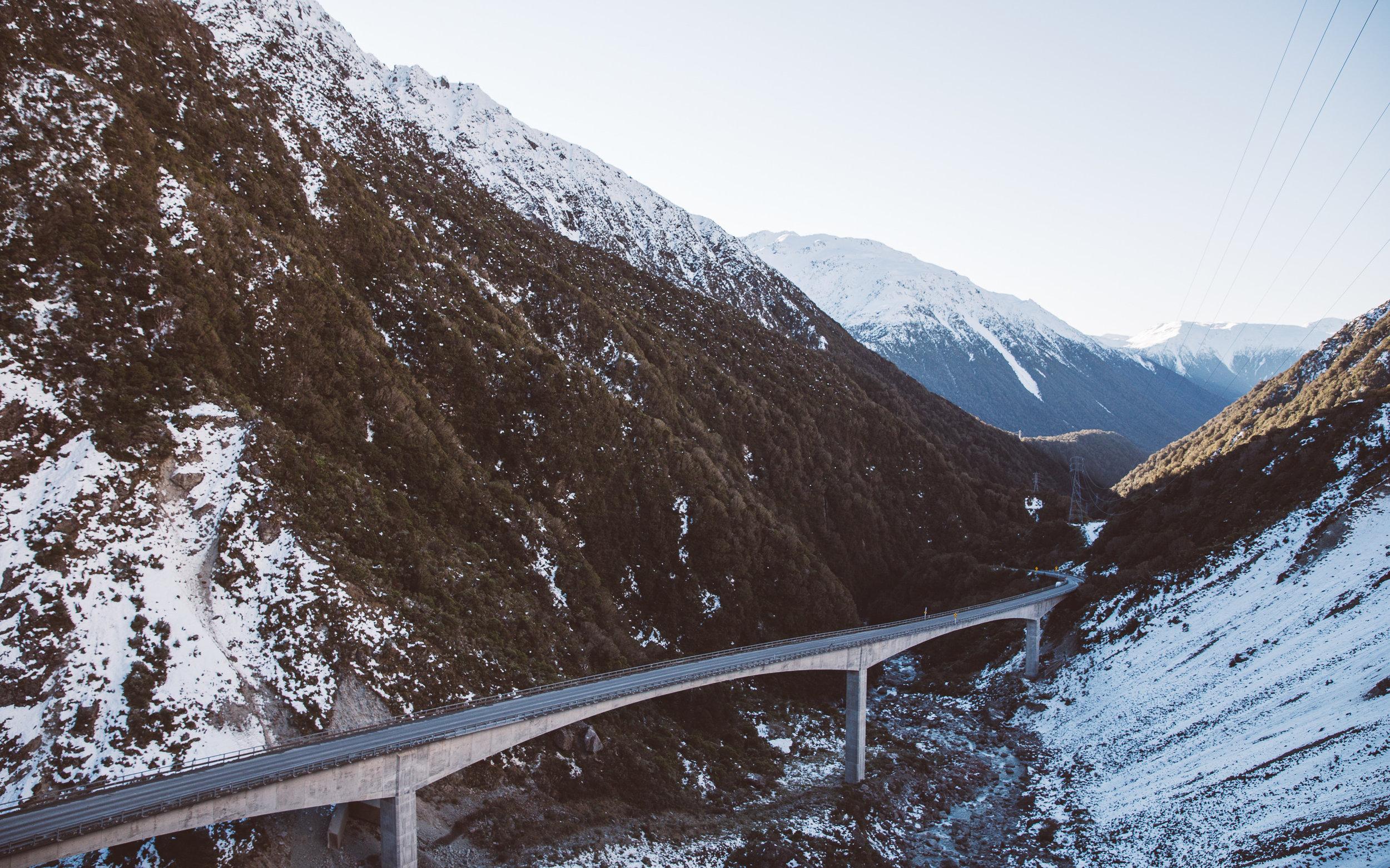 NZ_251.jpg