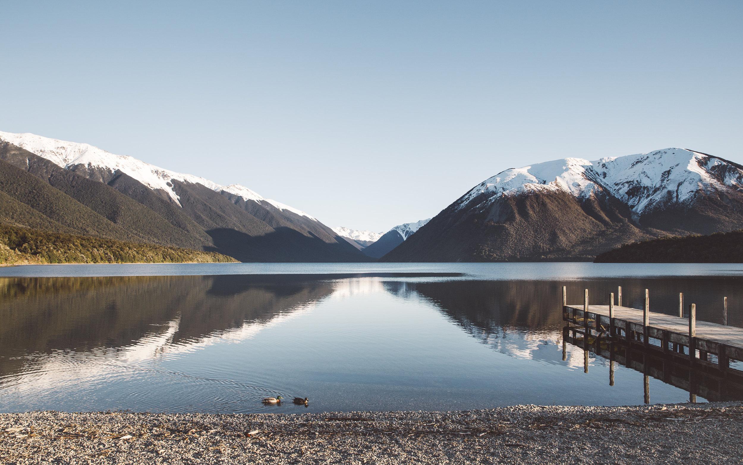 NZ_266.jpg
