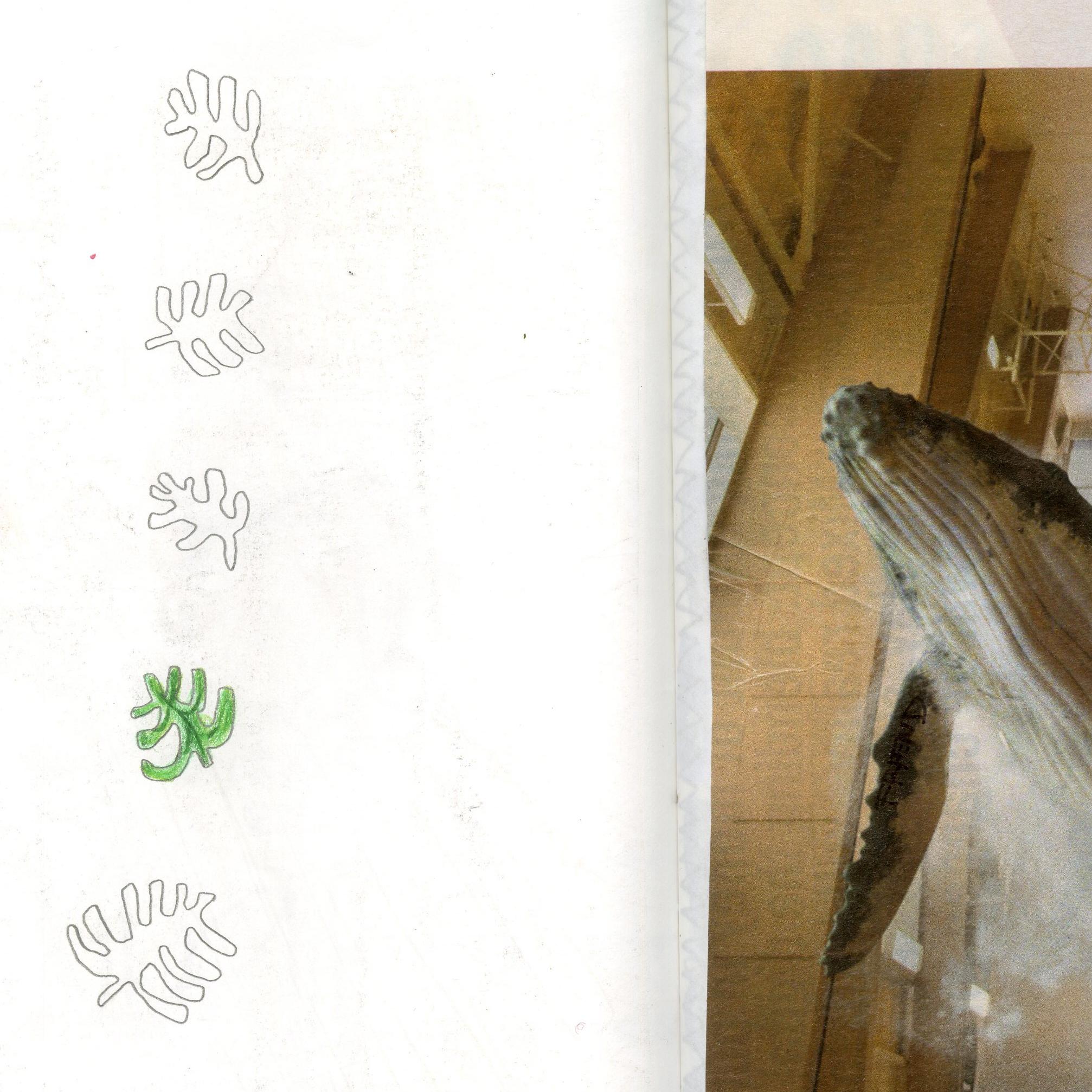 sb2-013.jpg