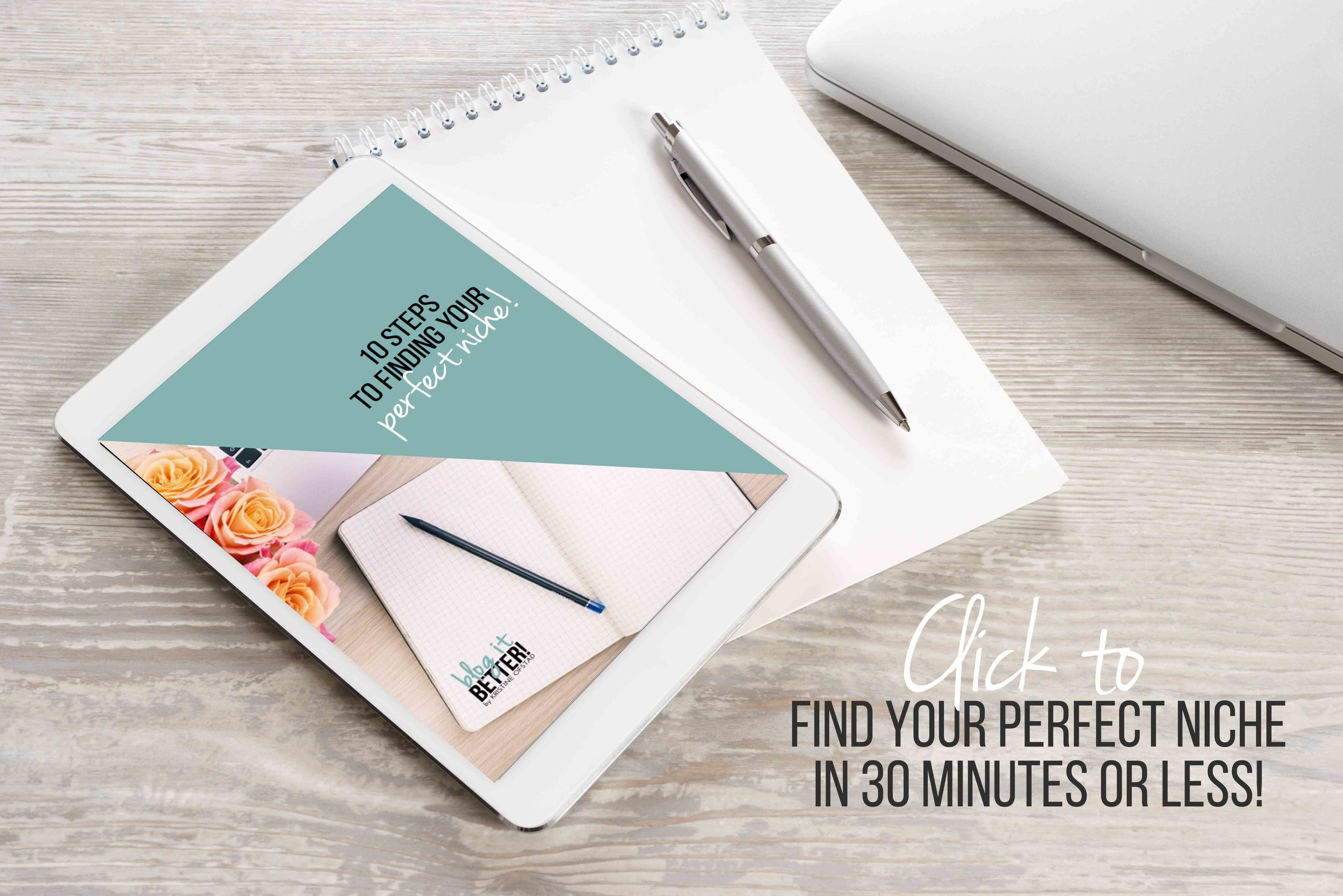 Find your perfect blogging niche in 30 minutes or less! Blog it Better!