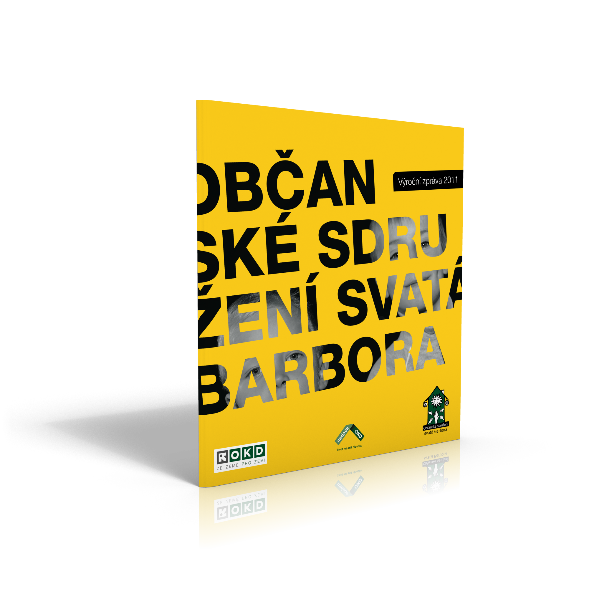 OSSB_2011_cover3D.png