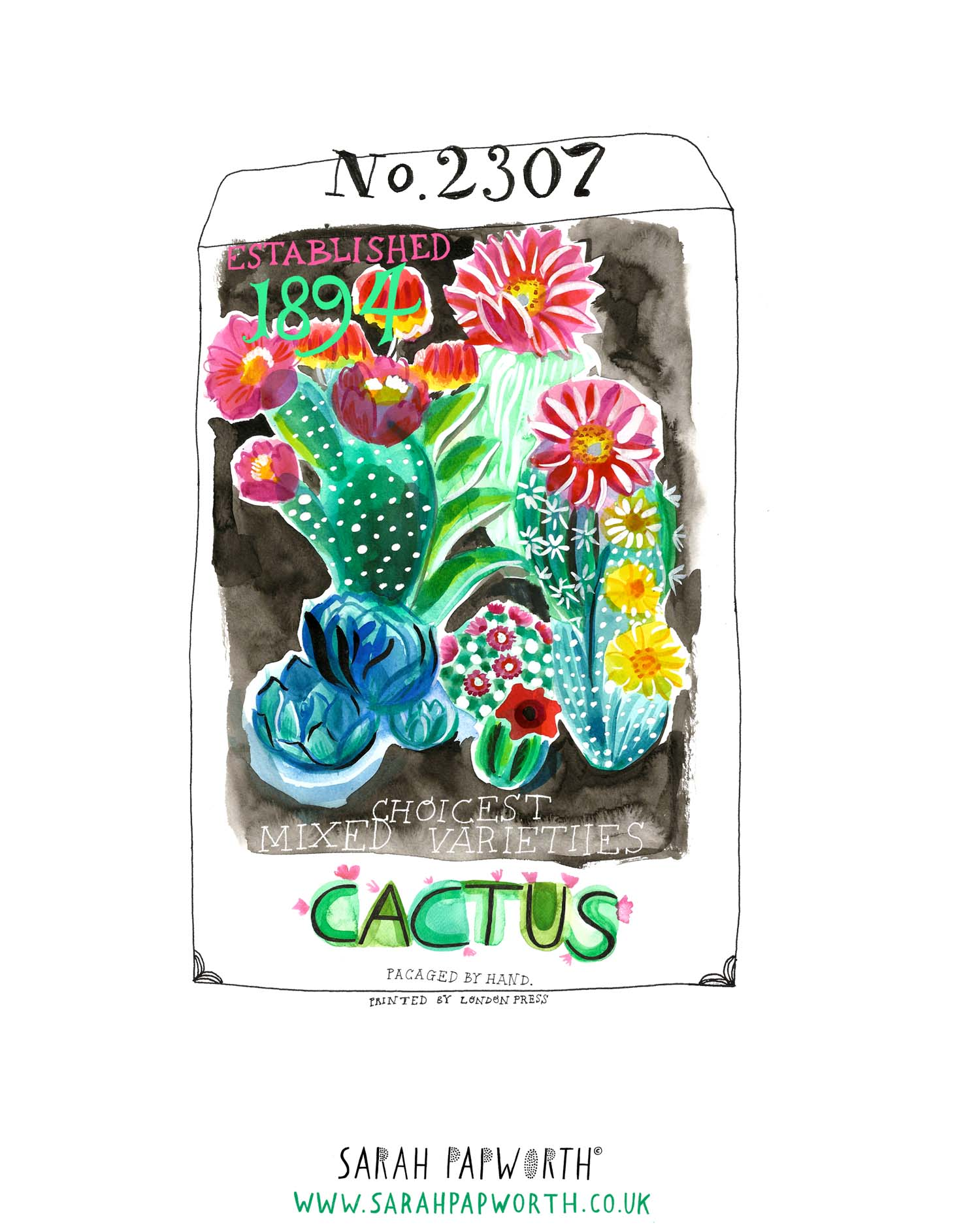 cacti illustration food watercolour editorial by sarah papworth.jpg