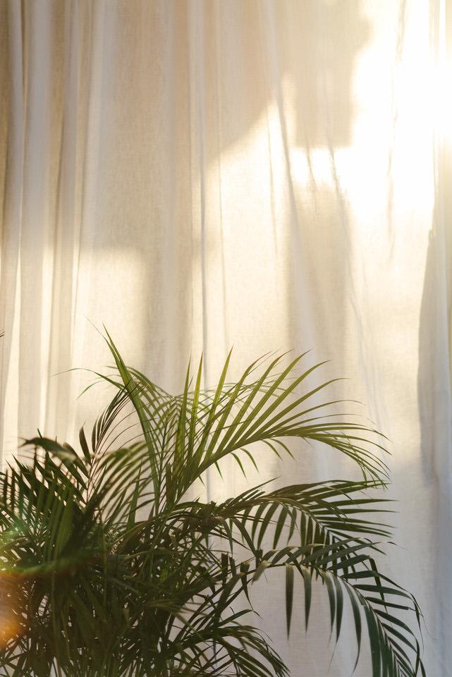 PhotographyByRenata-Palm-Beach-Golf-Club-Wedding-L&D-661.JPG