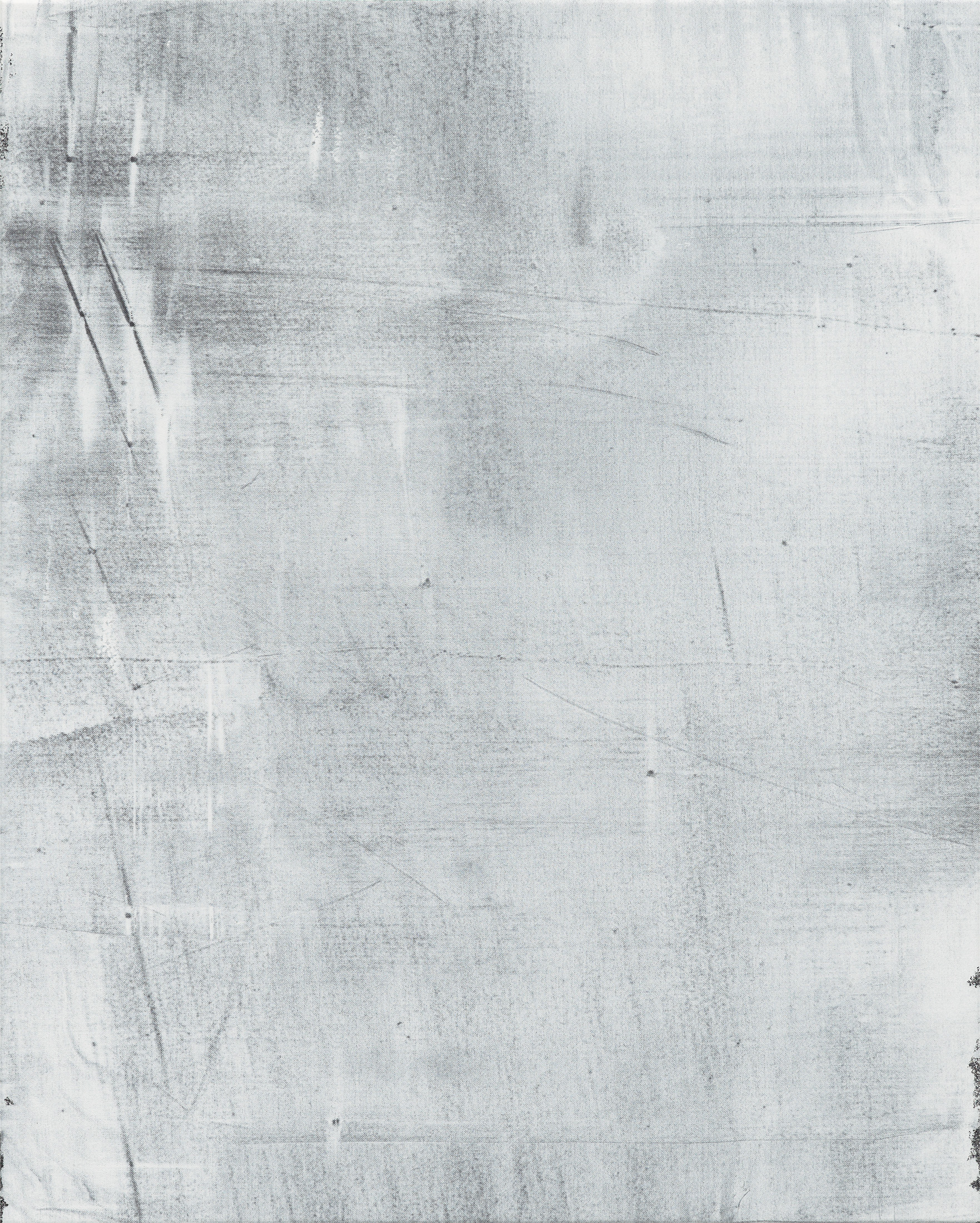 Untitled, 2013 (detail) diptych, acrylic on fabric 81,5 x 130 cm - 32 1/2 x 51 1/8 inches