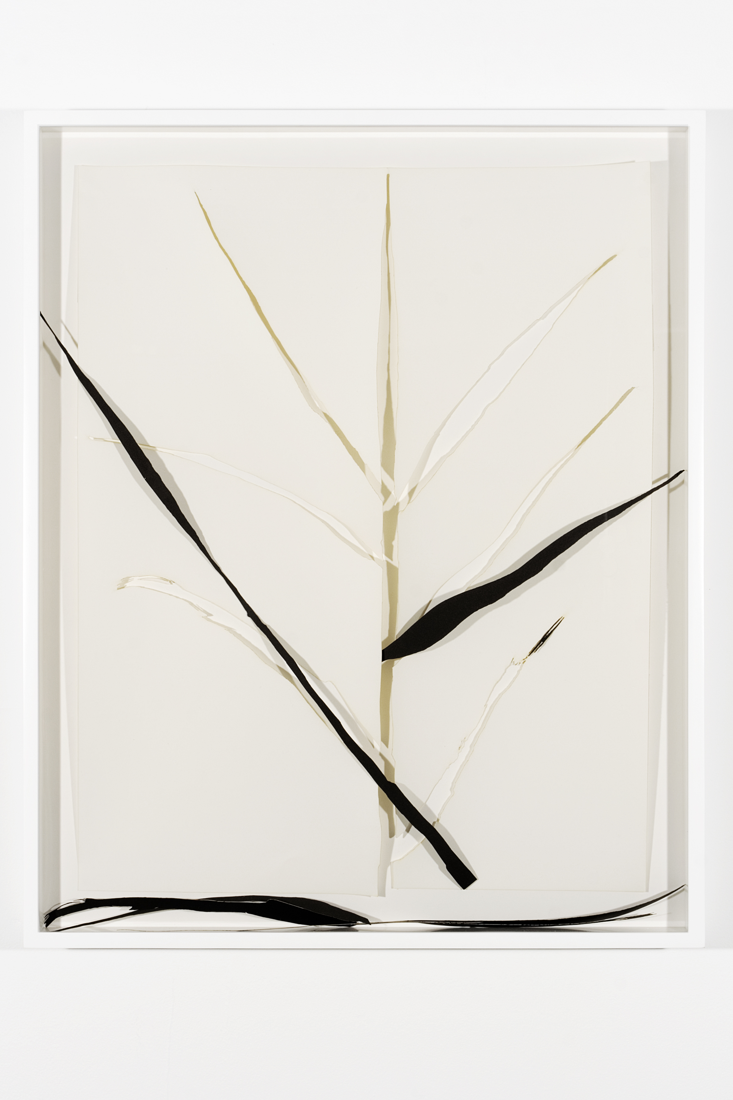 "Collapsed Drawing: ""Grass"" (Ellsworth Kelly), 2007 laser-cut paper and laser-cut archival digital print mounted on museum board 80,7 x 65,5 cm - 31 3/4 x 25 3/4 inches (framed)"