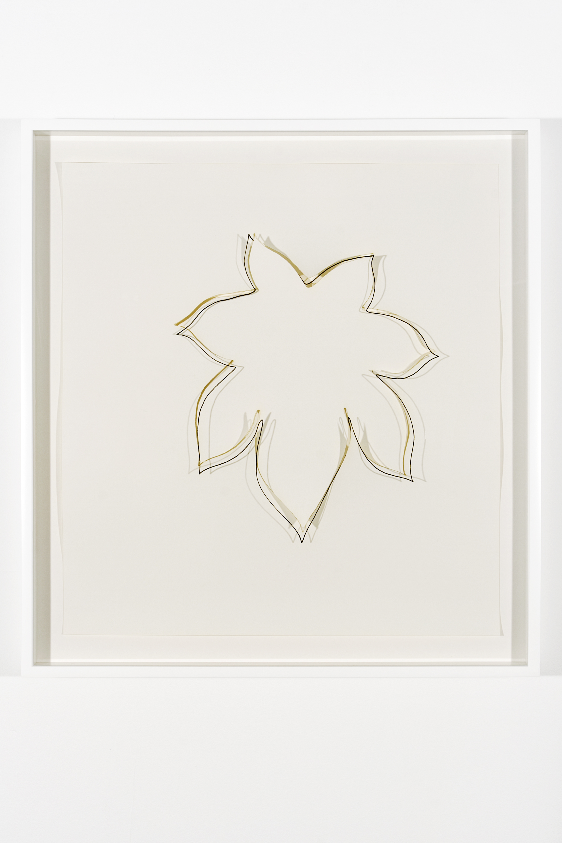"Collapsed Drawing: ""Castor Bean Leaf"" (Ellsworth Kelly), 2007 laser-cut paper and laser-cut archival digital print mounted on museum board 70,8 x 66 cm - 27 7/8 x 26 inches"