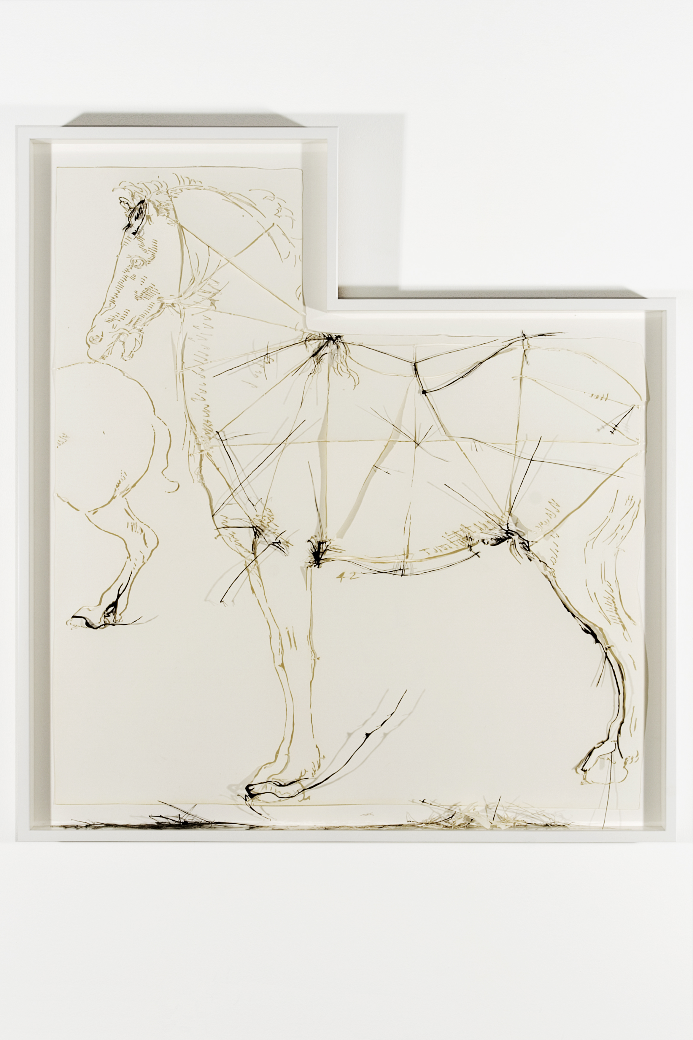 "Collapsed Drawing: ""Proportional Analysis of a Horse"" (Leonardo da Vinci), 2007 laser-cut paper and laser-cut archival digital print mounted on museum board 107 x 93,5 cm - 42 1/8 x 36 3/4 inches (framed)"