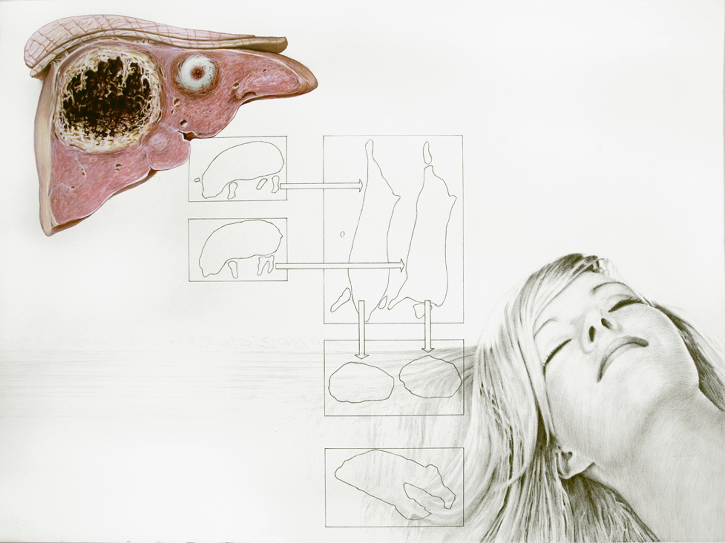Anatomy Weird-ohs (Liverman, Woman's Hair & Meat Chart), 2011 gouache, pencil and watercolor on paper 56,6 x 76,2 cm - 22 1/4 x 30 inches