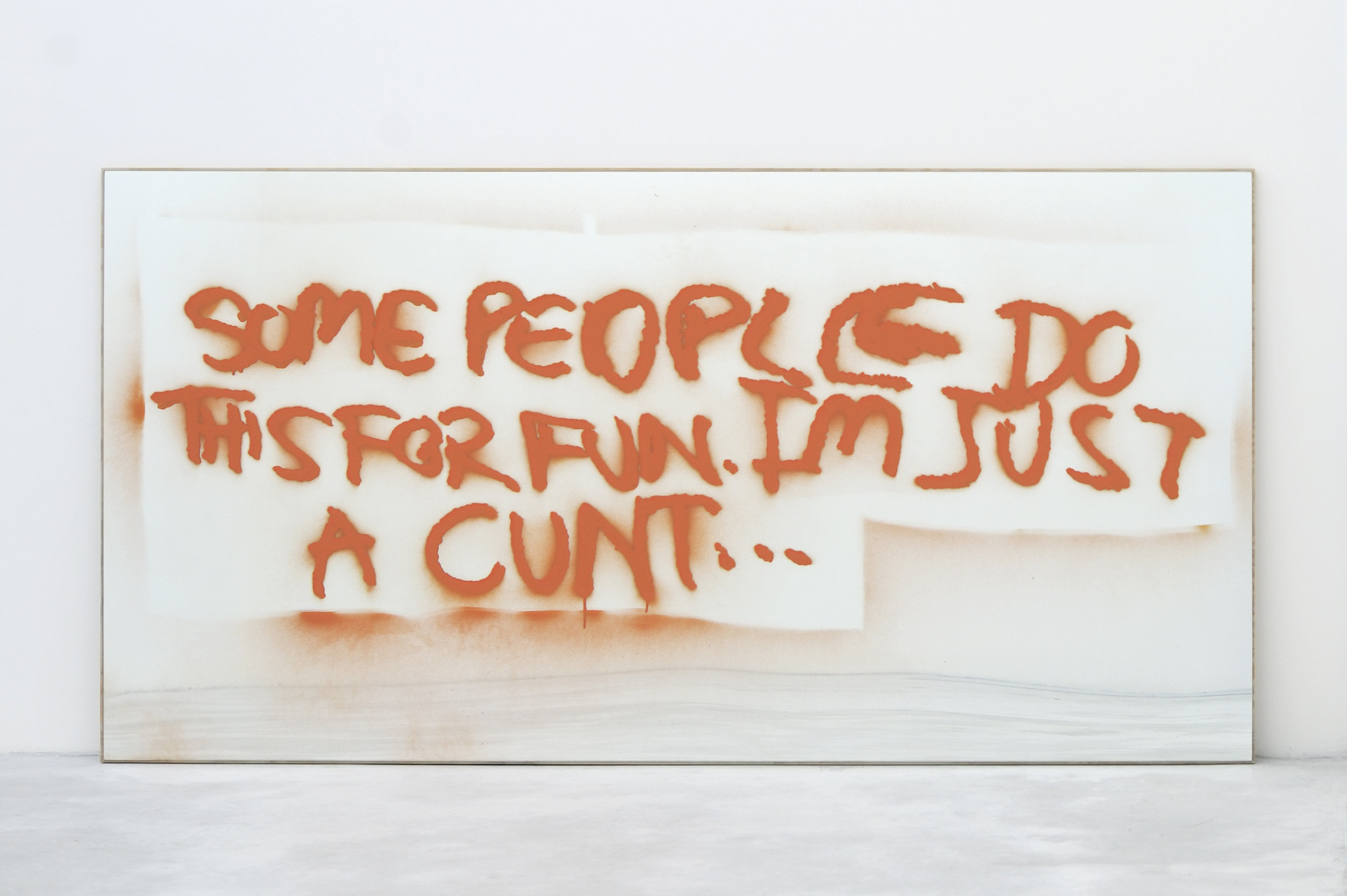 Sam Durant, Some People Do This For Fun. I'm Just A Cunt..., 2010 spray enamel on mirror, plywood 122 x 244 x 2,5 cm - 48 x 96 x 1 inches