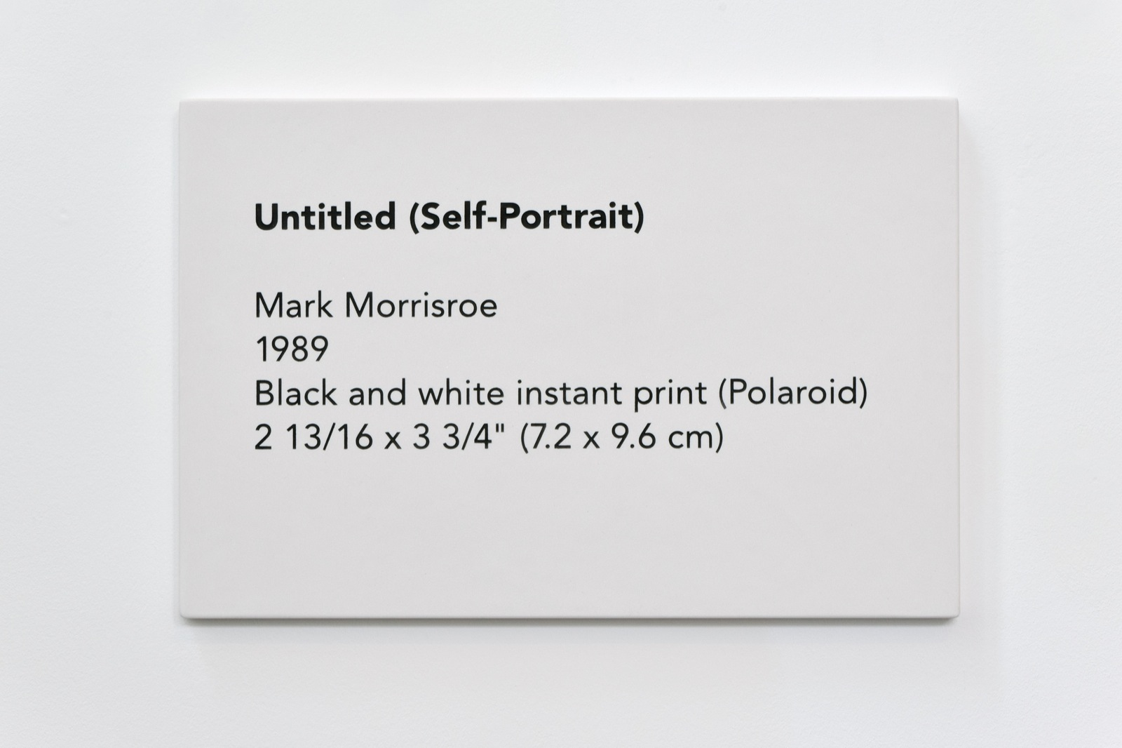 Elmgreen & Dragset, Self Portrait, No. 13, 2015 engraved marble 50 x 75 cm - 19 11/16 x 29 17/32 inches