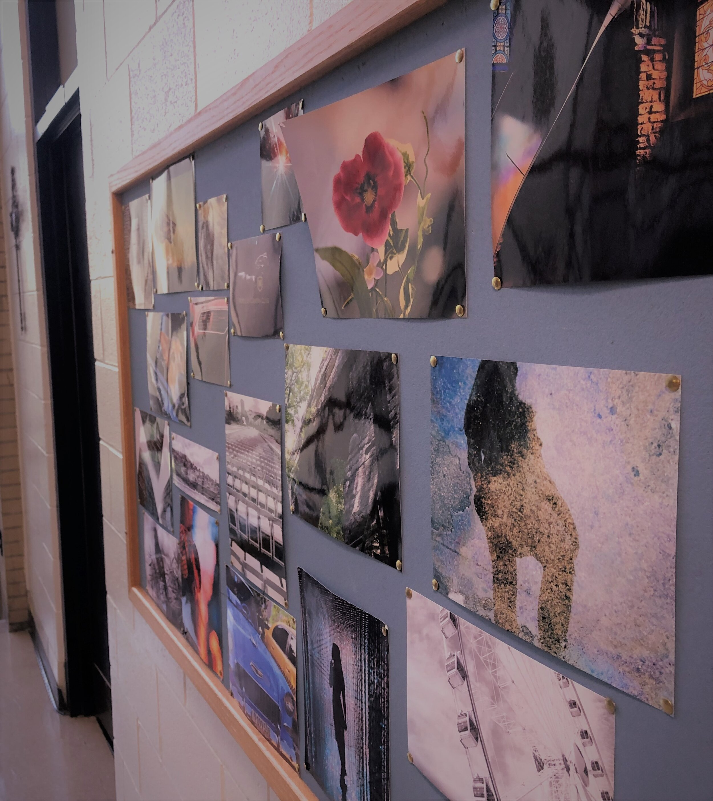 The Camera Club's photo board on display  by Nick Rohrer