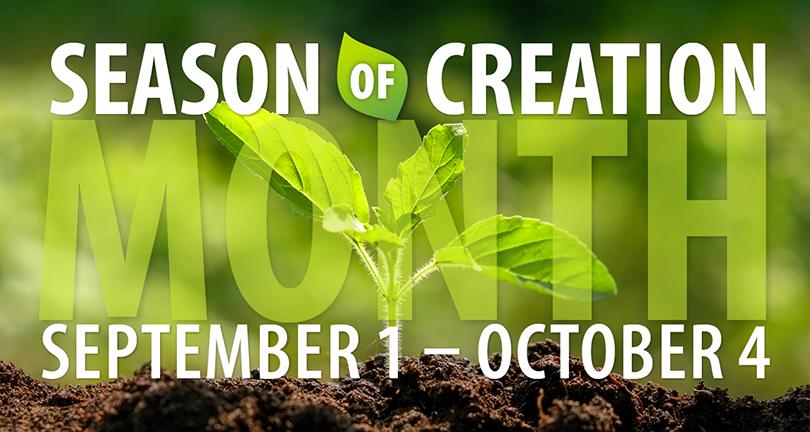 season-of-creation_mia_jpg_band-1.jpg