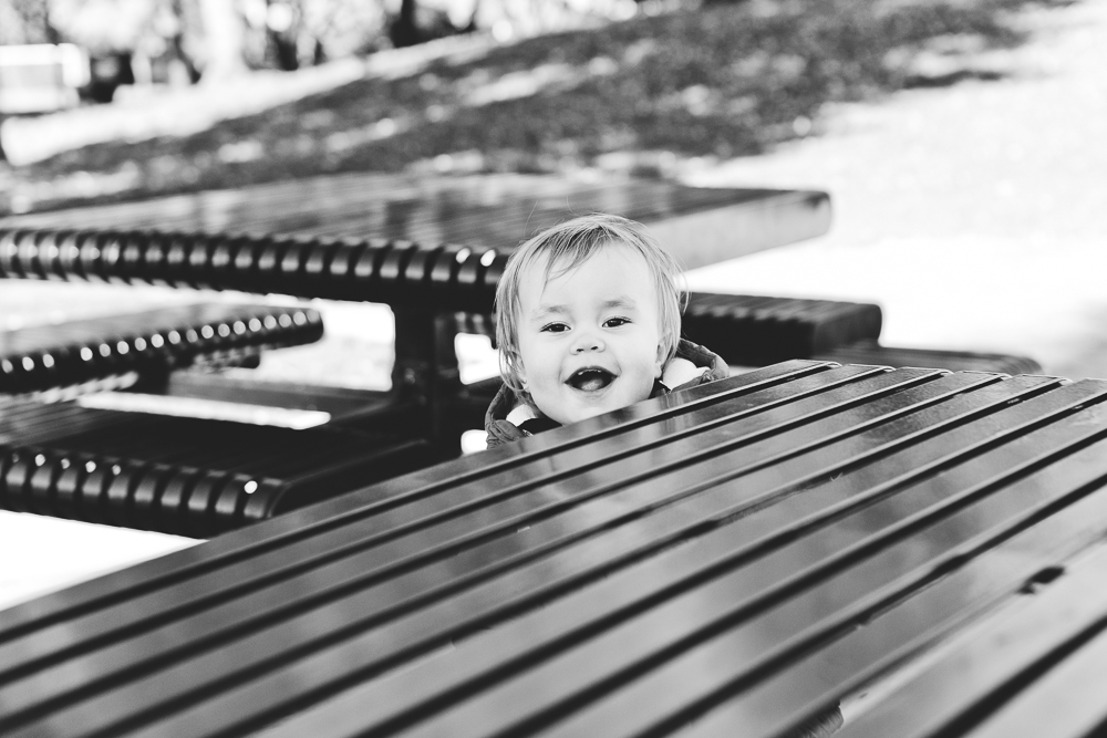Chicago Family Photographers_Oak Park_River Forest_JPP Studios_A_23.JPG
