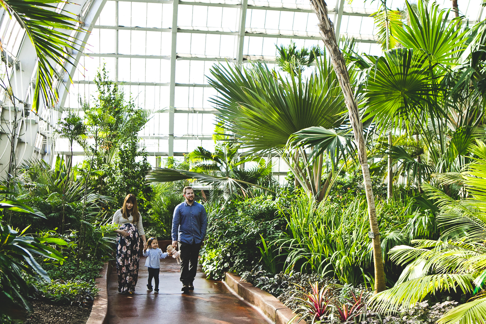 Chicago Family Photographers_Garfield Park Conservatory_JPP Studios_S_05.JPG