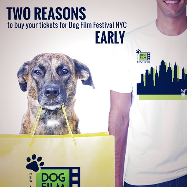The 3rd Annual Dog Film Festival debuts in New York City on Sunday, December 10th. The first 50 people to purchase tickets will receive a t-shirt or our awesome sWAG bag. Click the link in our profile for more info and to get your tickets.  #dogfilmfestival #dogsofnewyork #dogsofnewyorkcity #newyorkdogs #newyorkdog #nycevents #newyorkcitylife #newyorkfilm #NewYorkFilmFestival