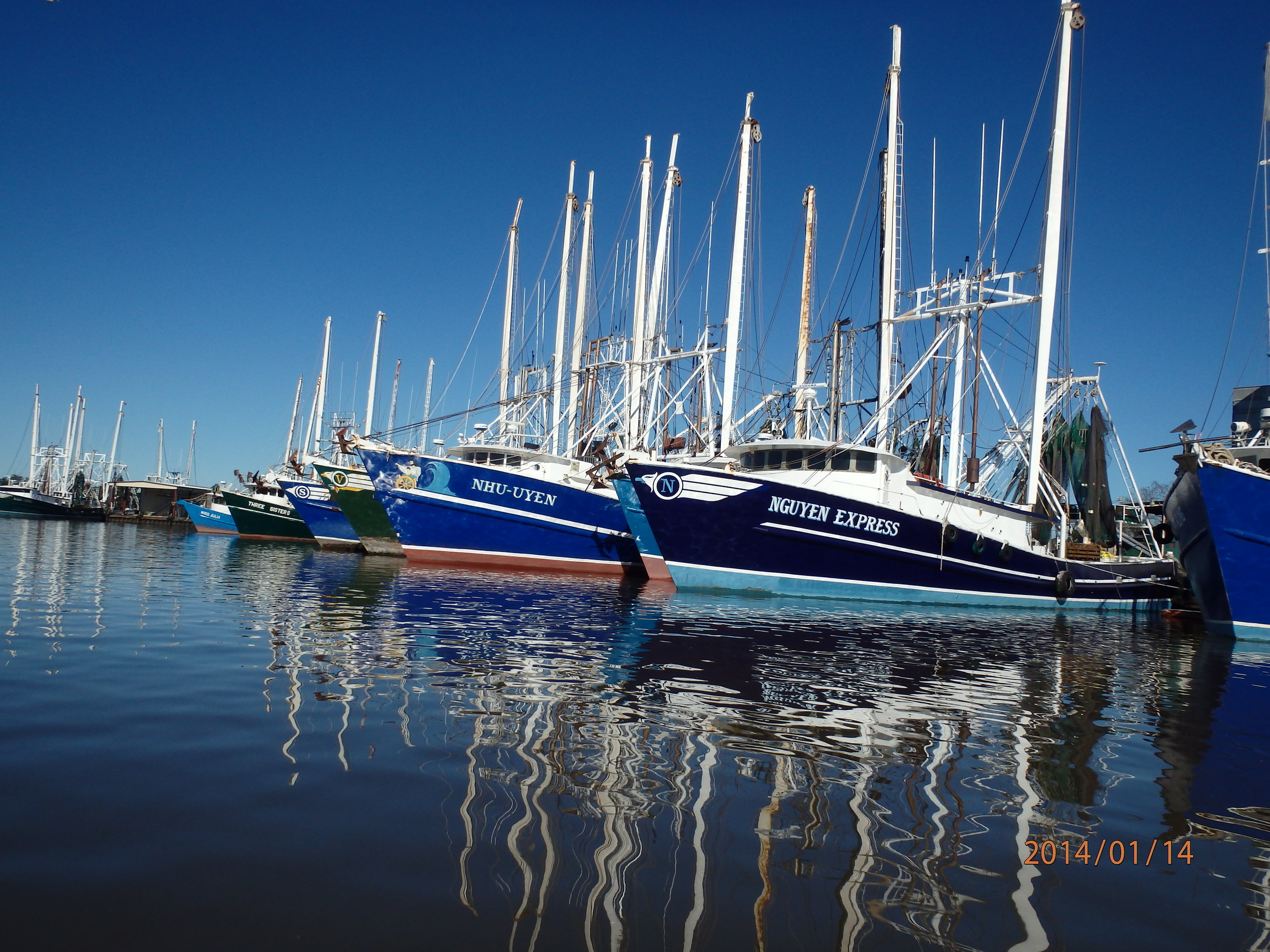 Shrimp boats at dock. Image courtesy of the LSU AgCenter.