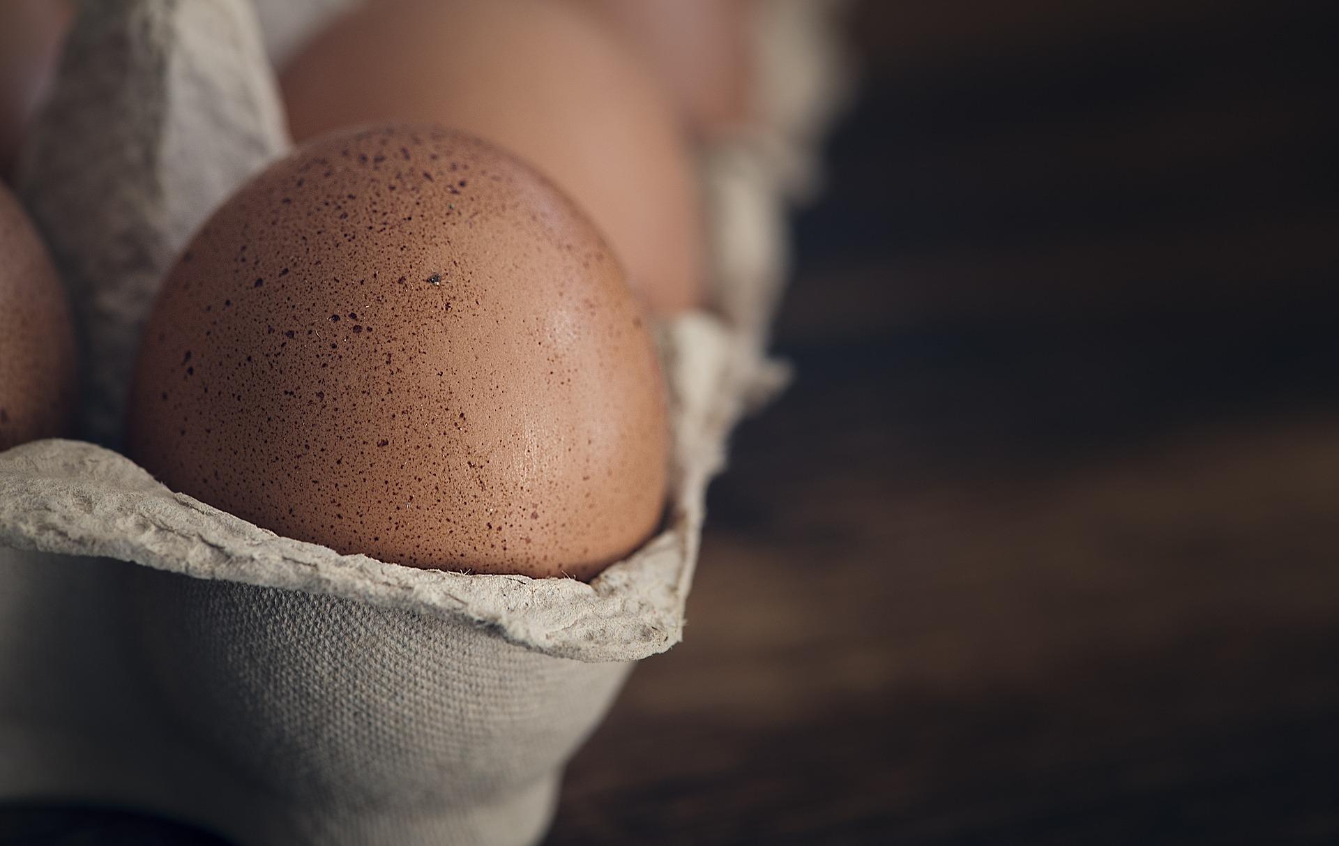 egg-1265735_1920.jpg