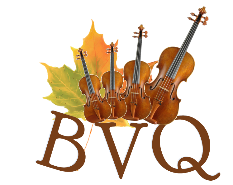 BVQ Logo.png