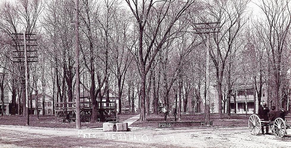 Park bare trees 1907 - Copy.jpg
