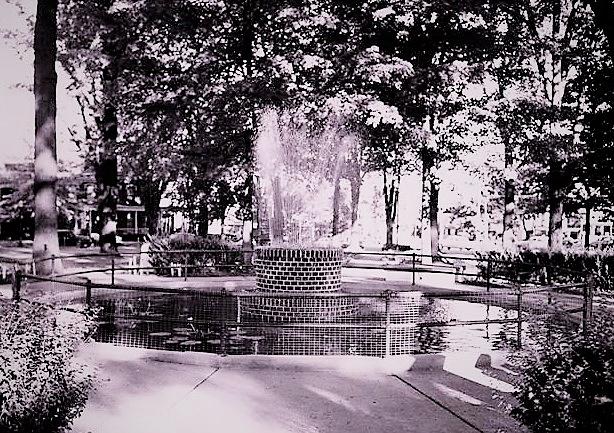 The Goldfish Fountain (2).jpg