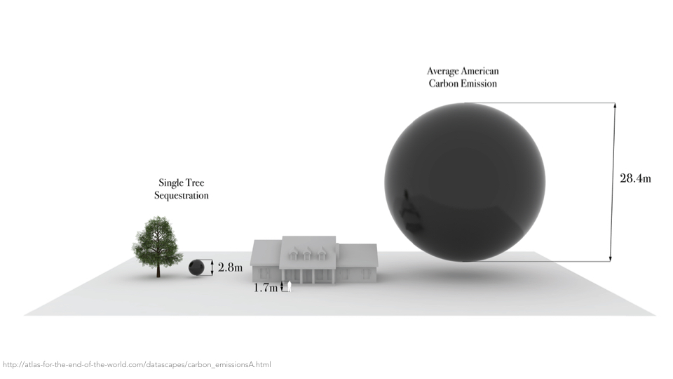 This is a graphic comparing the amount of carbon produced by an average American vs the amount sequestered by a single tree. This shows how the damage, still irreversible, requires further mitigation. We need to move away from our dedication to fossil fuels.