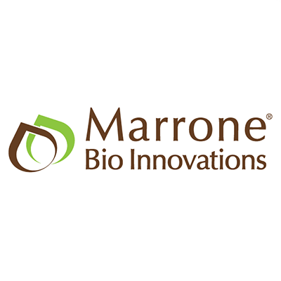Marrone.png