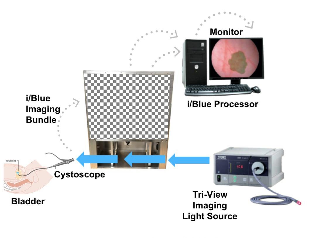 Imagin's i/Blue Imaging System