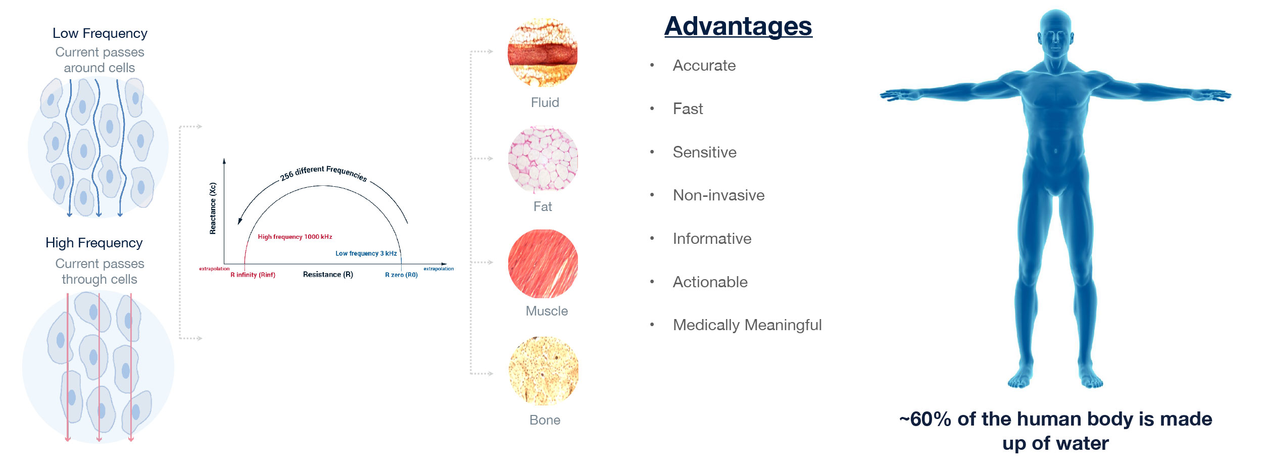 BIS technology is non-invasive, and provides fast, accurate and medically meaningful information