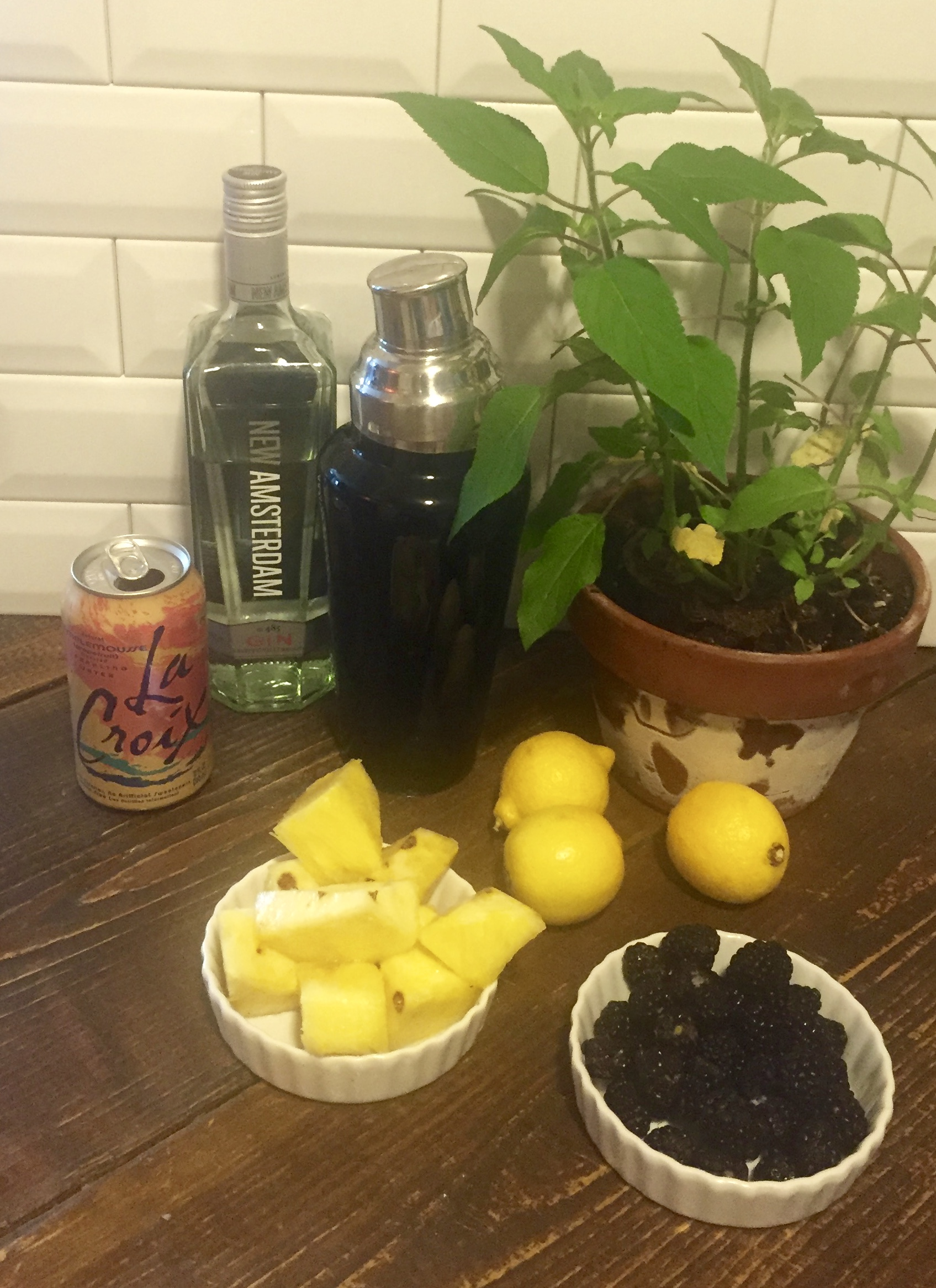 Pineapple_sage_cocktail_photo 1