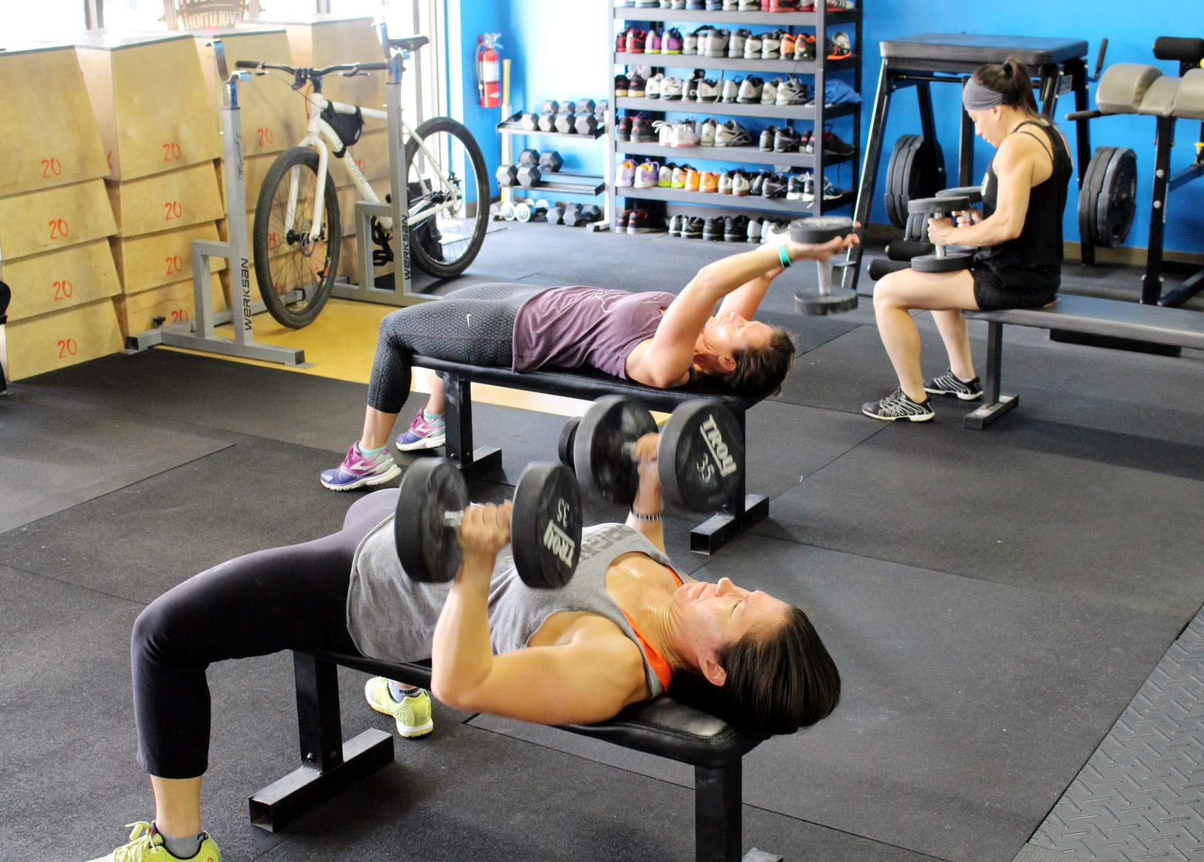 Bench Presses & Pullovers