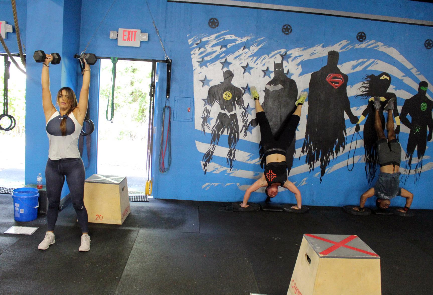 Shoulder Presses & Handstand Push-ups