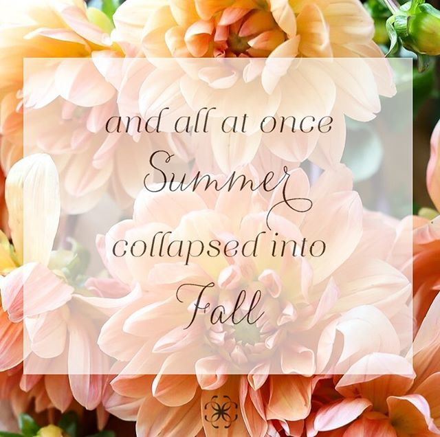 🍂 To all our friends and family, brides and grooms, friendors and followers, we wish you a beautiful and glorious fall! 🍁🍎🏈🍷🎃#happyfallyall  #fallweddings