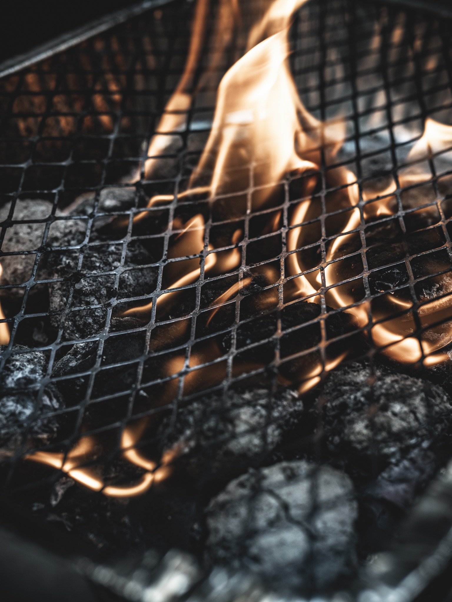 Carnivore diet disposable bbq flames