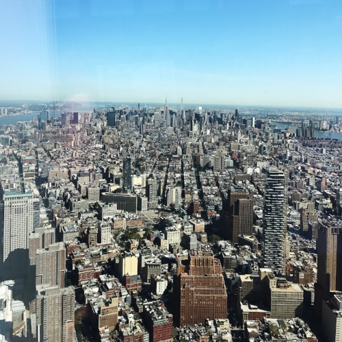 View from the 100th floor.