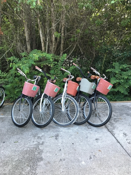 Bikes given to each guest at the Banyan Tree. There's a short Nature Trail that you can bike through.