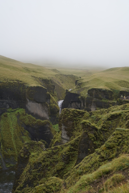 Day 2: Fjaðrárgljúfur - one of my favorite places we visited. The gorge was gorgeous!