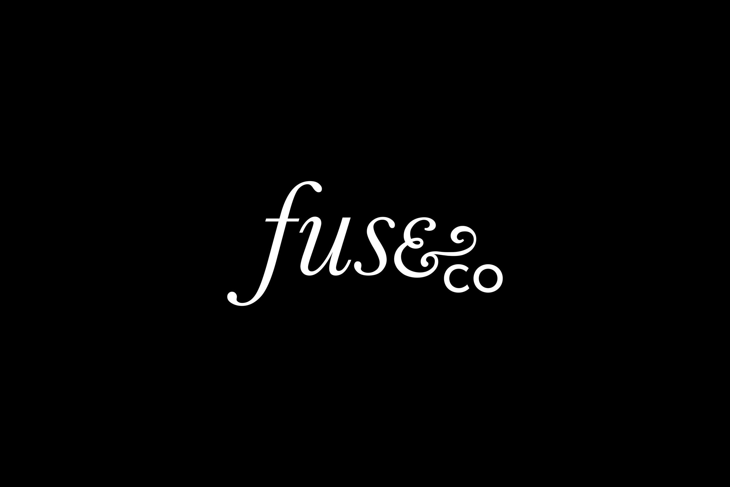 fuse and co.jpg