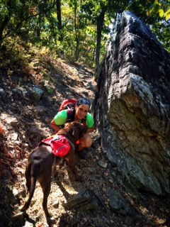 Pine Mountain Trail Hike
