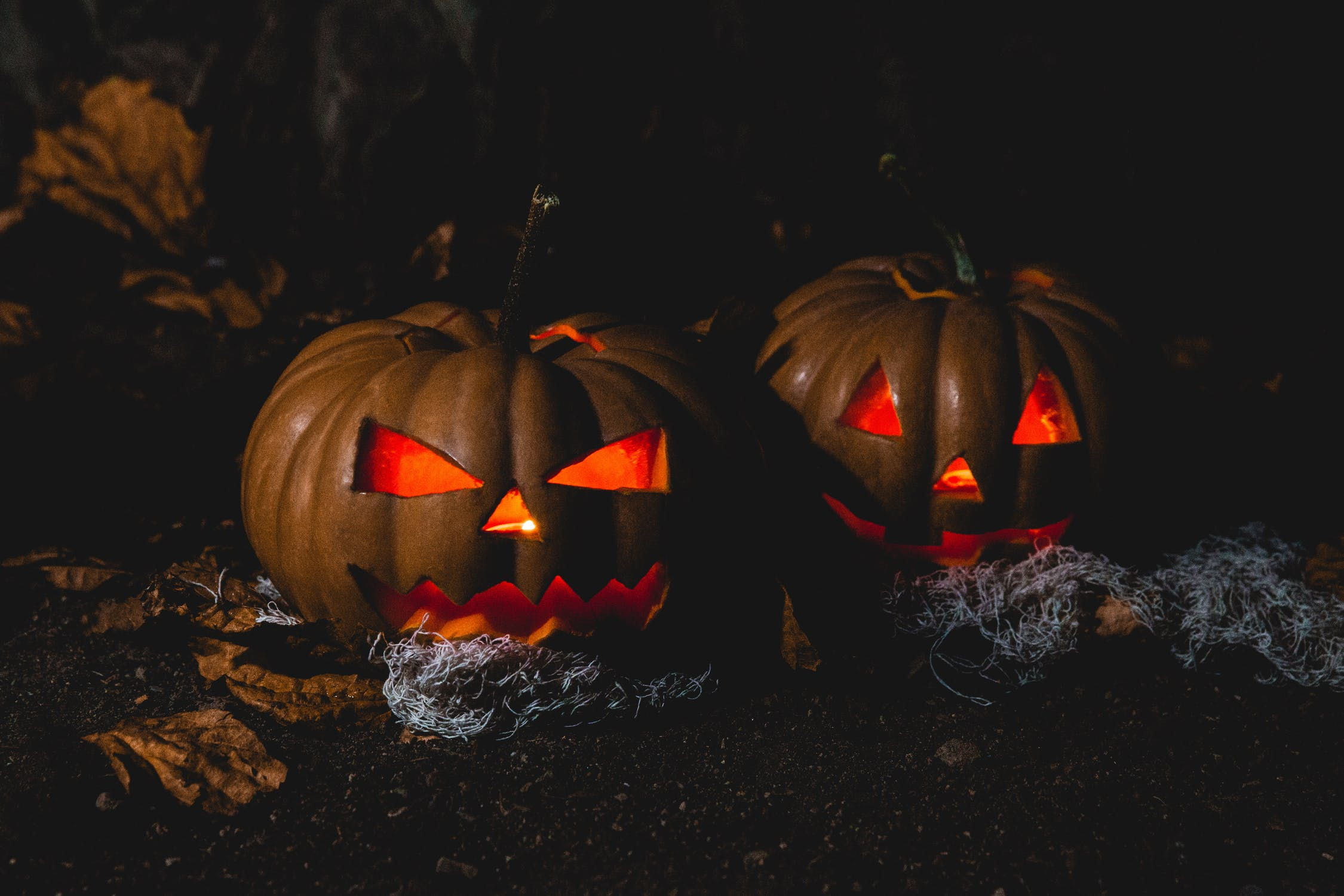 - Ladies Haunted CampOctober 27-28A little fear and lots of laughter will make for a great time.
