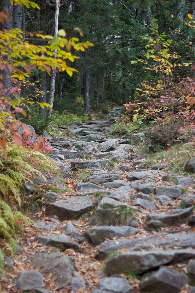 - At Experience | Winding Stair Gap to NOCJuly 12 - 14