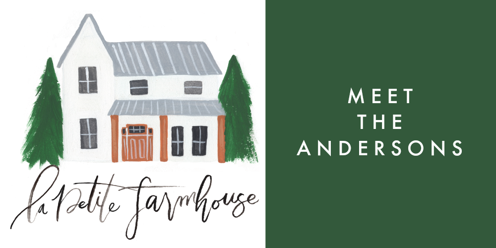 meet the andersons