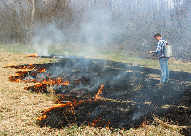 Spring Projects at the Farm | Controlled Prairie Burning | La Petite Farmhouse