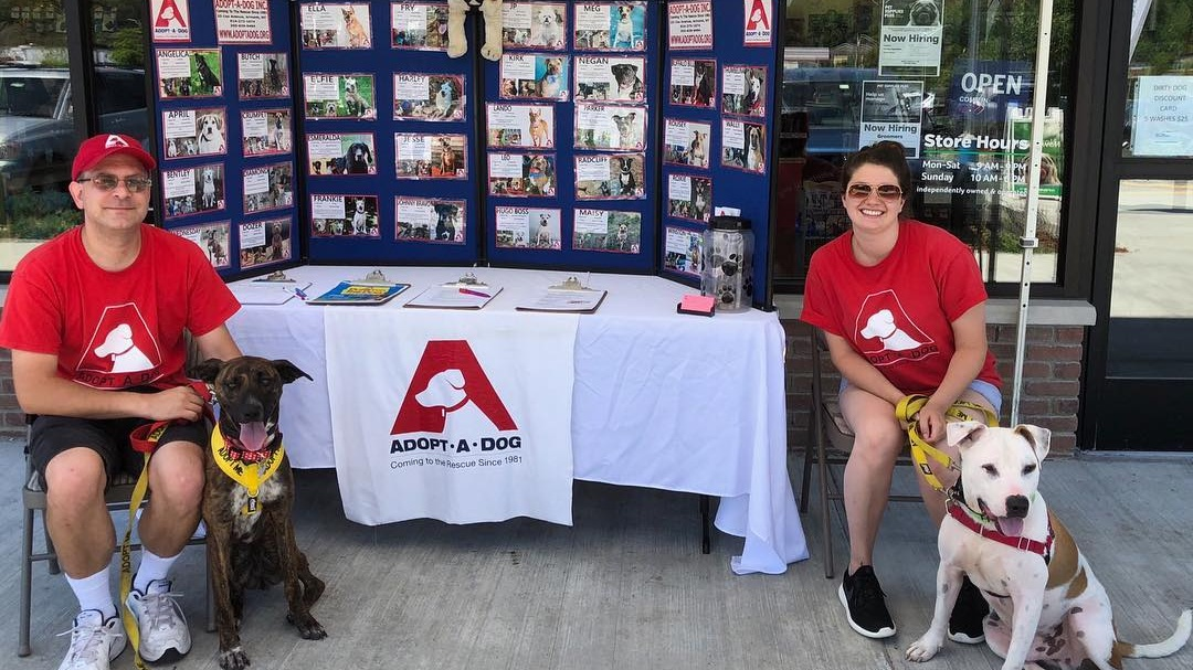 Come and meet dogs that are looking for their Furever home at our pet adoption event with  Adopt-a-Dog  - a Greenwich, CT shelter, whose mission is to save, socialize and secure loving homes for unwanted or abandoned dogs.