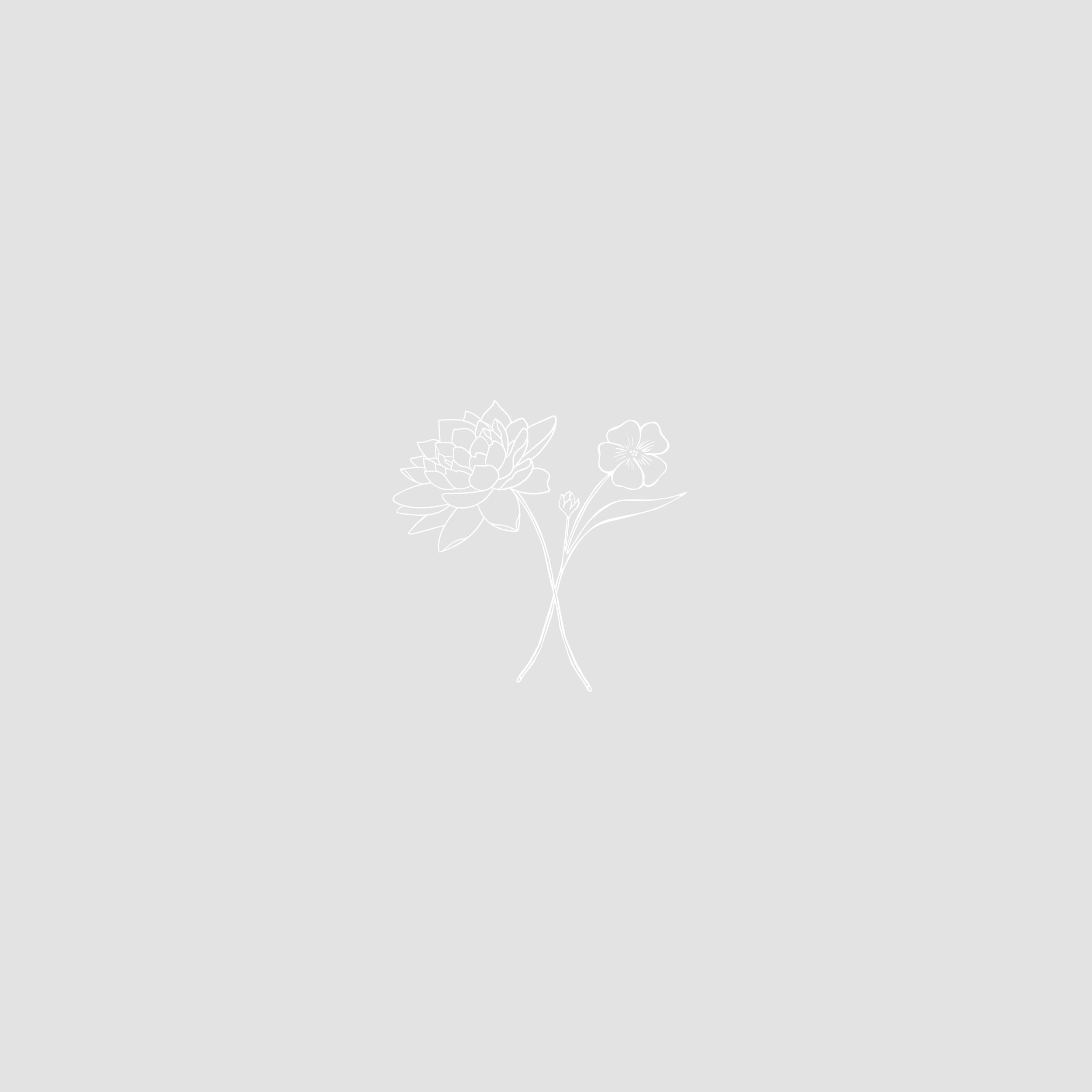 KXF_Social-07.jpg