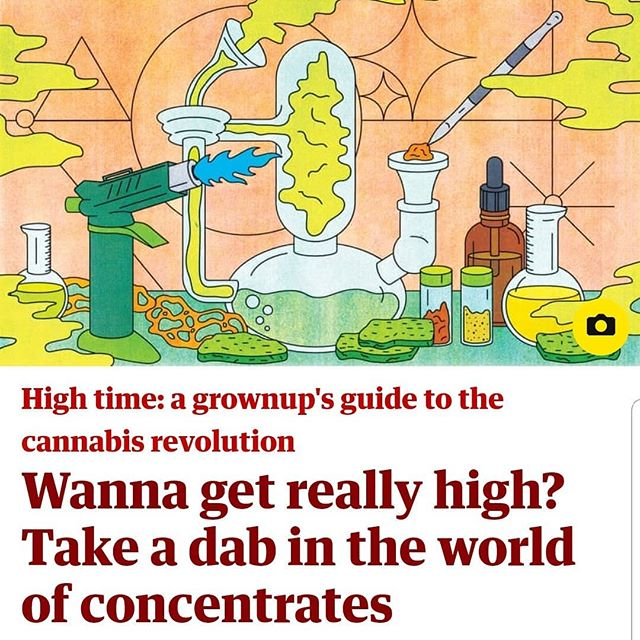 In Alex's new column for @guardian, he visits the world of #dabbing and #concentrates, with appearances from @puffco and @theclearconcentrates and delightful art by @sassybluepanda !  #cannabusiness #cannabiz #dablife #420 #420girls #marijuana #hash #hashish